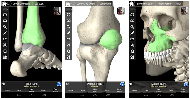 8 Best Anatomy Apps for Android & iOS (Latest 2019) - TechyHost